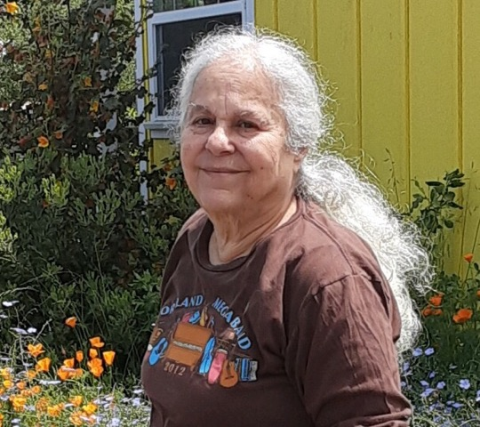 Sally Joughin
